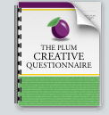 the_plum_creative_questionnaire_icon